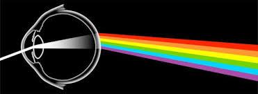 <b>Colors</b> | Radiolab | WNYC Studios