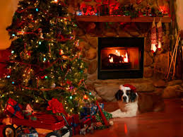 Image result for pics of christmas tree with fireplace