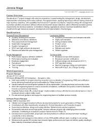 professional it software consultant templates to showcase your resume templates it software consultant