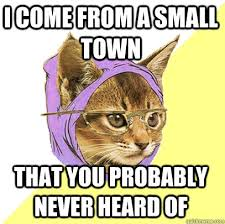 I Come From A Small Town Cat Meme - Cat Planet | Cat Planet via Relatably.com