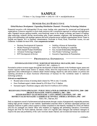 Senior Sales Executive Resume Example