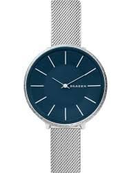 <b>Часы Skagen</b> (Скаген): купить оригиналы в Краснодаре по низкой ...