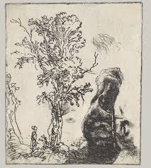 rembrandt van rijn prints essay heilbrunn sheet two studies a tree and the upper part of a head of rembrandt
