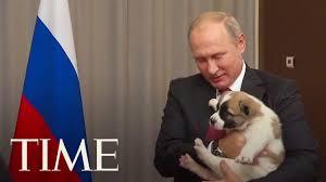 Here's The Awkward Moment When Vladimir Putin Got A <b>Puppy</b> As ...