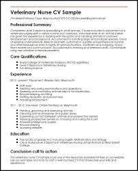 curriculum vitae nurse practitioner