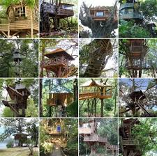 Custom Tree House Plans  DIY Ideas  amp  Building Designs