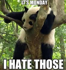 Funny-I-hate-Monday-MEME-and-LOL.jpg via Relatably.com