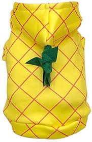 NACOCO Halloween Dog Pineapple Costume <b>Pet Cosplay Clothes</b> ...