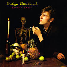 Image result for robyn hitchcock