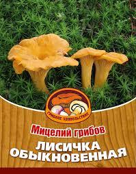 "<b>Мицелий грибов</b> ""<b>Лисичка</b> обыкновенная"", субстрат, <b>60 мл</b> ..."