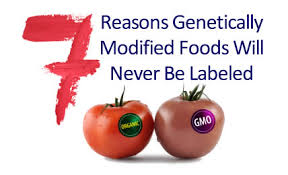Image result for gmo foods
