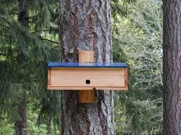 Shelters  Birds and Winter on PinterestNighttime Shelter for Winter Birds   plans to build a Bird Roost  Take them down