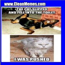 Clean Memes – The Best The Most Online | Clean memes and images ... via Relatably.com