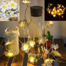 <b>Creative</b> DIY Frangipani <b>LED String Lights</b>, AA Battery 3M Floral ...