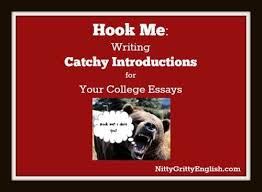 how to write catchy hooks for essays   my essaytyperhook me  writing catchy introductions   nitty gritty english