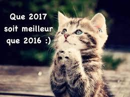 """Résultat de recherche d'images pour """"gifs bonne année 2017"""""""