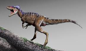 Tiny <b>T</b>-<b>Rex</b> relative is dubbed the 'harbinger of doom' | Daily Mail ...