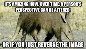 180 Deep Thoughts Aardvark memes | quickmeme via Relatably.com