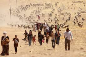 Image result for world refugee crisis images
