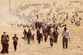 Image result for world refugee crisis images