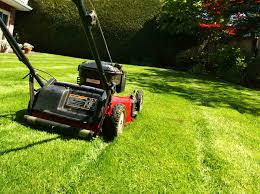 applecross lawn mowing applecross lawn mowing hedging and pruning