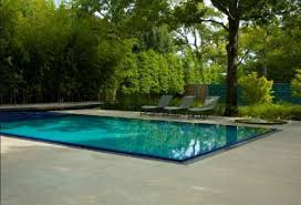 Small Picture Interesting Garden Design With Pool Designs And Decorating Ideas