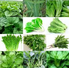 「無料 緑葉野菜」の画像検索結果