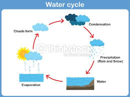 vector cycle of water for kids vector art   thinkstockvector cycle of water for kids   vector art