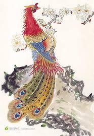 Image result for 凤凰图