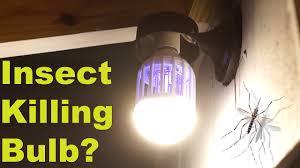 Can this 'normal' light bulb kill mosquitoes? - <b>Flying Insect</b>, <b>Moth</b> ...