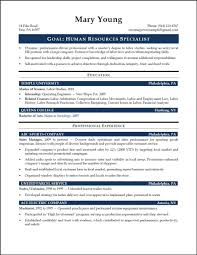 cover letter skill set resume examples examples of skill set for cover letter hr recruiter resume template authorization letter process hr resumes samplesskill set resume examples large