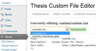 A Complete Guide to Understanding the Power of Thesis Wordpress     SDavis Media