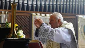 Image result for Photo of Fr.Stefano Manelli at Mass