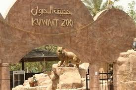 اهم الارقام في الكويت