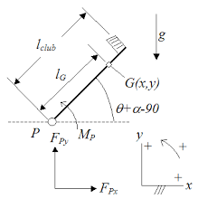 physics of a golf swing  body diagram of golf swing