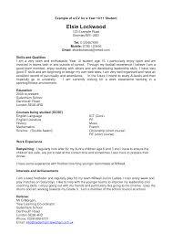 resume  examples of great cvs  corezume cogood resume