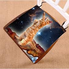 GCKG <b>Funny Bacon Cat in</b> Space Pattern Chair Pad Seat Cushion ...