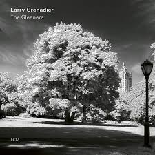 The Gleaners - Album by <b>Larry Grenadier</b> | Spotify