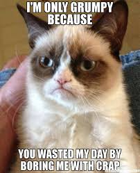 I'm only grumpy because you wasted my day by boring me with crap ... via Relatably.com