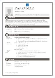 RESUME BLOG CO  One Page Excellent Resume Sample for MBA   Sales
