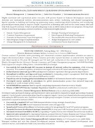 Resume Examples  Senior Sales Customer Service Resume Sample With Strengths In Cost Control And Professional
