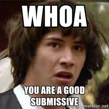 Whoa You are a good submissive - what if meme | Meme Generator via Relatably.com