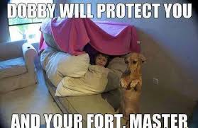 Fort Security guard   Funny Pictures, Quotes, Memes, Jokes via Relatably.com