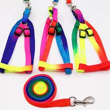 Colorful Rainbow Pet <b>Dog Collar Harness Leash</b> Soft Walking ...