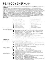 professional digital marketing professional templates to showcase resume templates digital marketing professional