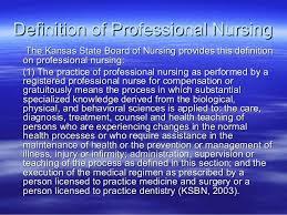 professionalism in nursing essay example   essay for you professionalism in nursing essay example img