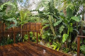 Small Picture Tips in Maintaining Tropical Garden Home Garden Air Garden ideas