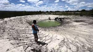 Resultado de imagem para de seca no Brasil