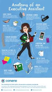 best images about administrative assistants skills and helpful becoming an indispensable executive assistant is not easy these are key traits and skills that define innovation and lead to indispensability at the