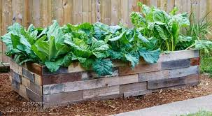 6 things to think about before preparing a <b>raised bed garden</b>